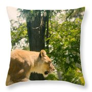 Female Lion On The Move Throw Pillow