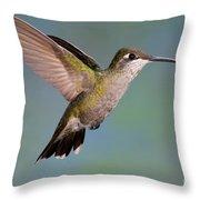 Female Magnificent Hummingbird At Flower Throw Pillow