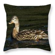 Female Mallard And Duckling Throw Pillow