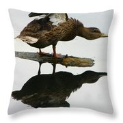 Female Mallard Duck  Throw Pillow
