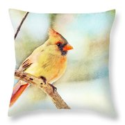 Female Northern Cardinal - Digital Paint I Throw Pillow