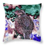 Female Pheasant Abstract Throw Pillow