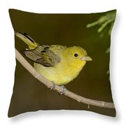 Female Scarlet Tanager Throw Pillow