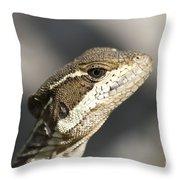 Female Striped Basilisk Throw Pillow