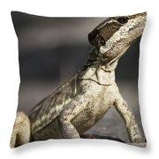 Female Striped Lizard Throw Pillow