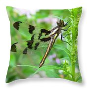 Female Twelve-spotted Skimmer Throw Pillow