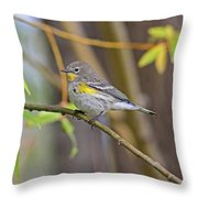 Female Yellow-rumped Warbler Throw Pillow