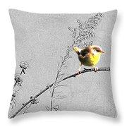 Female Yellow Throat On Gray Throw Pillow
