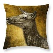 Female Yellowstone Elk Throw Pillow