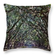 Fence And Wormsloe In Savannah  Throw Pillow