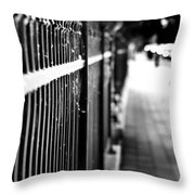 Fence At Eight  Throw Pillow