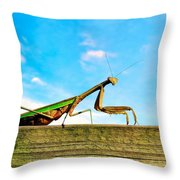 Fence Creeping Throw Pillow