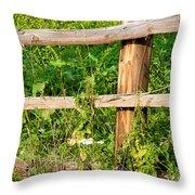Fence Detail Throw Pillow