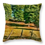 Fence - Featured In Comfortable Art Group Throw Pillow