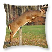 Fence Jumper Throw Pillow