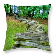 Fence Line Throw Pillow by Dan Stone