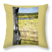 Fence Pasture Horse 14419 Throw Pillow