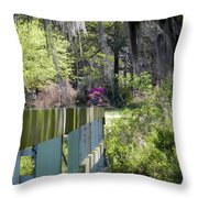Fence Points The Way Throw Pillow