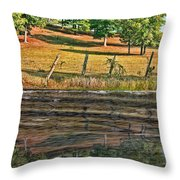 Fence Reflection Throw Pillow