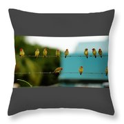 Fence Sitting Throw Pillow