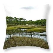 Fence Thru The Marsh Throw Pillow