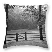 Fence Throw Pillow