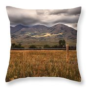 Fence View Throw Pillow
