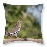 Fence Walker Throw Pillow