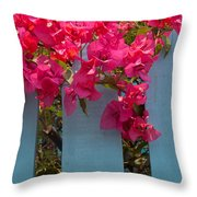 Fence With Bouganvillia Throw Pillow