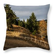 Fenced In Warm Autumn Light Throw Pillow