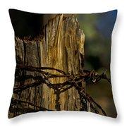 Fenceline 2 Throw Pillow