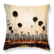 Fenholloway River Florida Throw Pillow