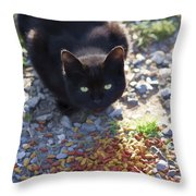 Feral Learning Trust Throw Pillow