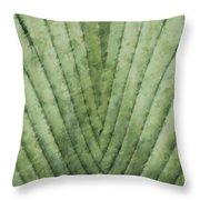 Fern - Chalk Throw Pillow