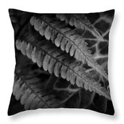 Fern And Arum Throw Pillow