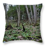 Fern And Hemlock Hill Throw Pillow