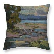 Fern Cove Vashon Island Throw Pillow