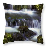 Fern Falls - 31 Throw Pillow
