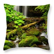 Fern Falls Panoramic Throw Pillow