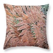 Fern Frond Frosted Throw Pillow