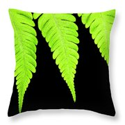 Fern Isolated On Black Background Throw Pillow