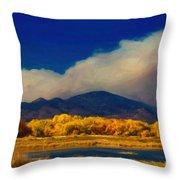 Fern Lake Fire Throw Pillow