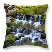Fern Spring In Spring In Yosemite Np-2013 Throw Pillow