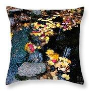 Fern Spring Yosemite Throw Pillow