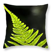 Fern Tip Throw Pillow