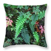 Ferns Along The Columbia River Throw Pillow