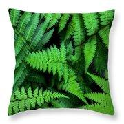 Ferns Along The River Throw Pillow