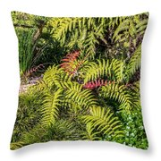Ferns And More Throw Pillow