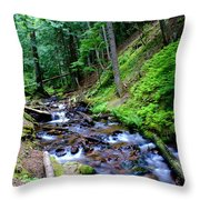 Ferns Dancing By The Creek Throw Pillow