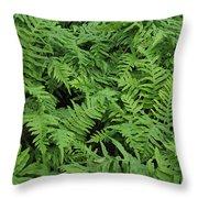 D3b6327-ferns In Sonoma Throw Pillow